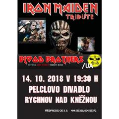 IRON MAIDEN TRIBUTE / BLOOD BROTHERS (UA)